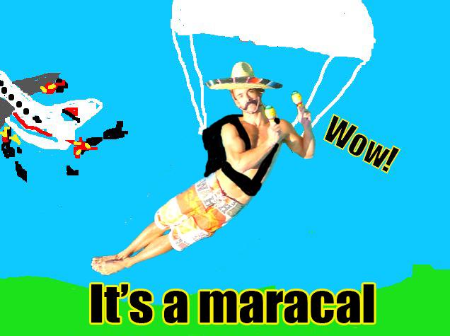 Survivor Maraca Libre!