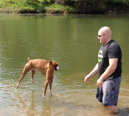 Image of: Dog 15 Animals Without Necks Freaking News Animals Without Necks Gallery Ebaums World