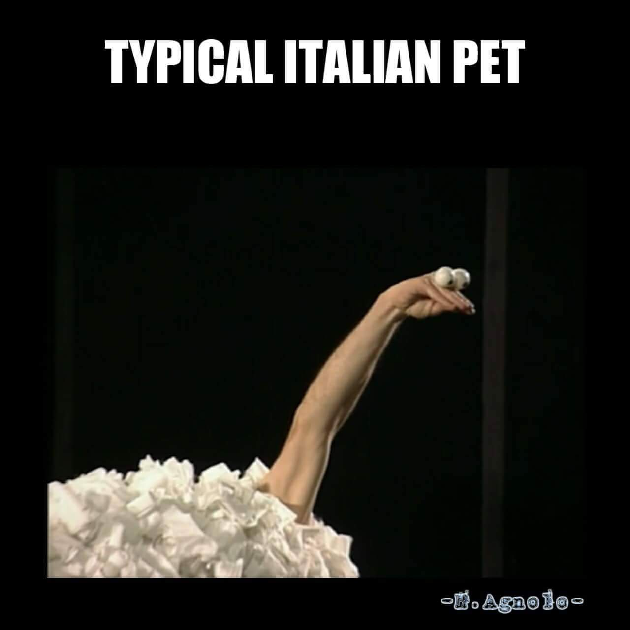 23 Italian Memes That Are Scary Accurate - Gallery | eBaum ...