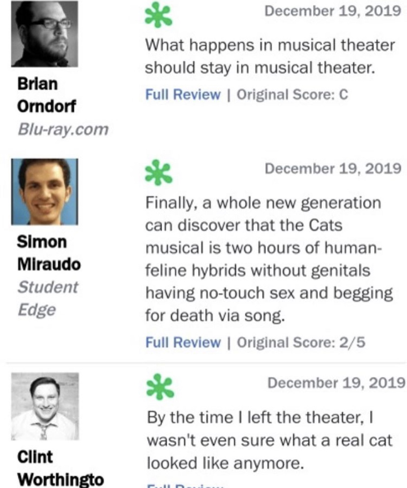 A Handful Of Hilarious Cats Reviews So You Know To Avoid