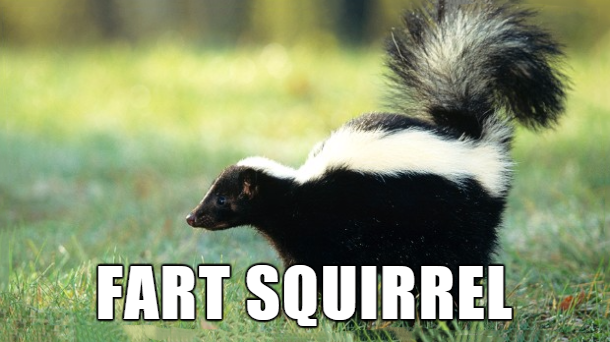 28 Hilarious Pothead Names For Animals - Funny Gallery