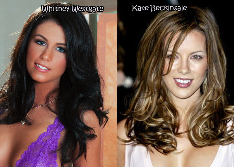 20 Celebrities And Their Pornstar Lookalikes
