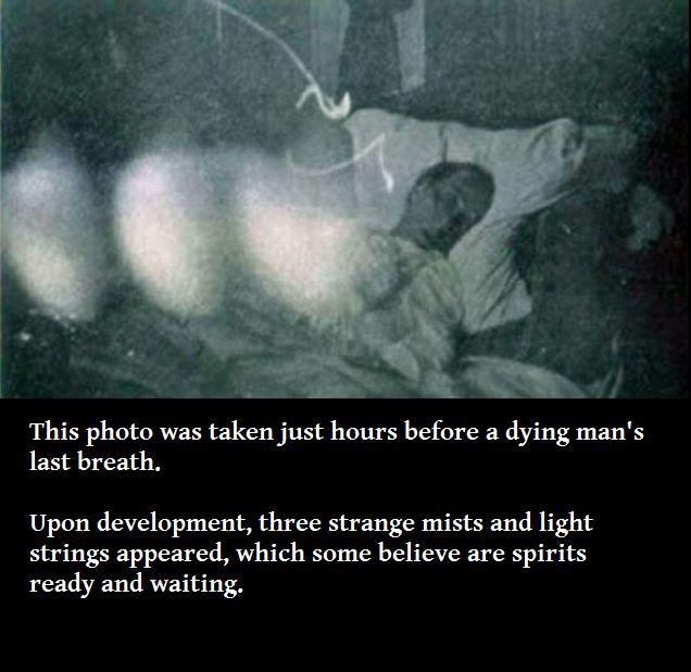 Aaahhhh Real Ghost Photos Paranormal Gallery Ebaum S World