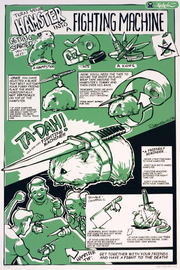 Step by step instructions on how to turn your regular old hamster into your very own mean, lean, fighting machine.  (Enlarge picture to see properly.)