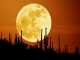 some amazing and beautiful shots of the moon