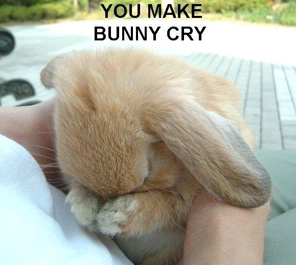 lol crying!