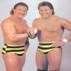 This is a gallery of some of the worst pro wrestling gimmicks/costumes of all time.