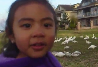 An adorable little girl has something to say about the abundance of birds before her.