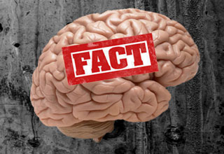 <p>Fun facts most people don't know. &nbsp;Give your brain a little exercise and learn something new today.</p>