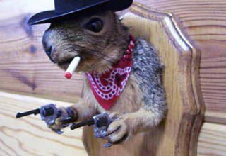 28 examples of taxidermy animal art ranging from cool to bizarre. Chuck Testa would be proud.