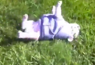 I could watch this English Bulldog puppy roll down a hill for hours.