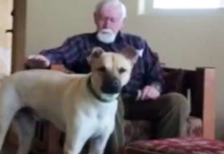My father has Alzheimers and doesn't have much speech ability left. This is what happens when he is with our dog.