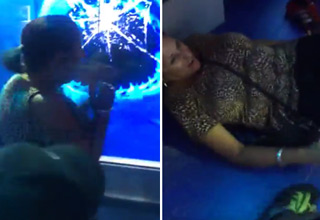 Family pulls a prank on granny at the museum that knocks her off her feet...