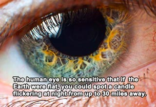 The human body sure is amazing, and these facts may blow your mind.