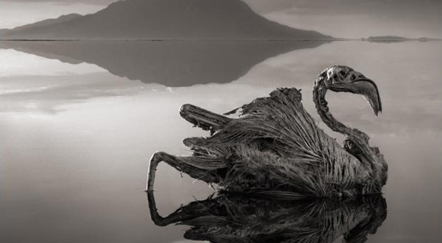 This lake is so creepy, it's hard to believe that it really does exist.
