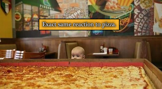 26 pics and gifs of how babies act like total lushes.