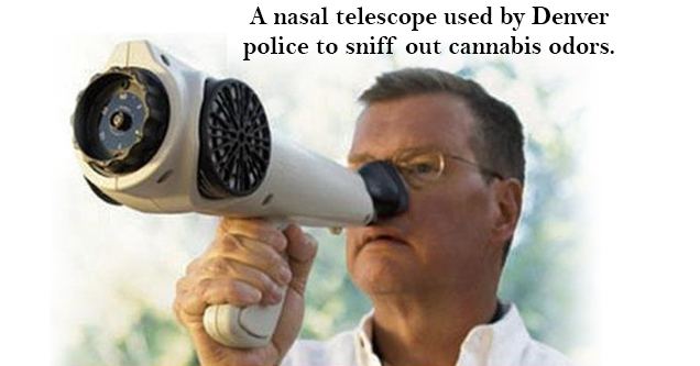 17 things that actually exist