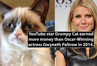 youtube star grumpy cat next to gwyneth paltrow