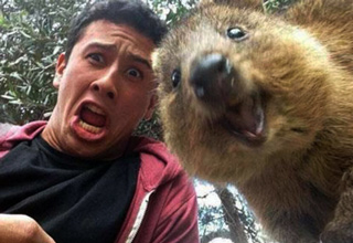 When it comes to taking a great selfie, these folks know how it's done!