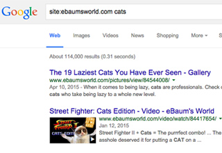 These will help you search the internet better.