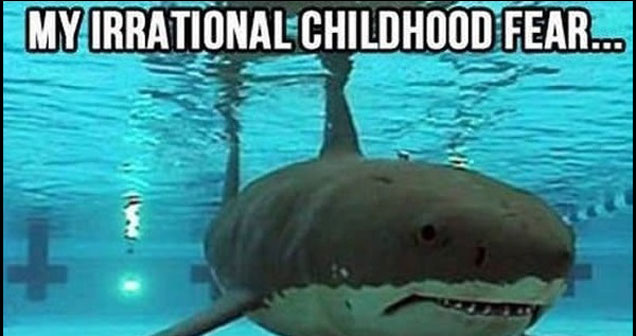 a nostalgia meme with a  shark in a swimming pool