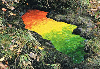Scottish sculptor Andy Goldsworthy creates works of art by arranging leaves, sticks, rocks or anything else he can find.