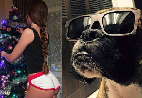 A big batch of funny, random, and WTF pics to entertain your brain.