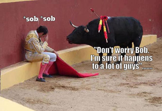 Welcome to the eBaum's World Caption Contest #113 - Bull Fight