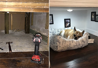 This dog has a nicer room than Harry Potter did.