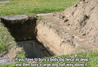 unethical life hacks | Unethical lifehack that says If you have to bury a body dig twice as deep and then bury a large dog half way above it.