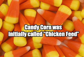Increase your candy knowledge with these sweet facts!