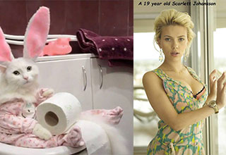 scarlet johansson and a cute cat on the toilet 1f4g6b8t5