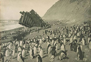 Amazing images from Antarctica that were taken over 100 years ago.