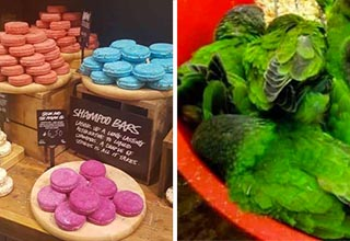 a tray of soap that looks like macarons and a bowl of green birds that look like leafy greens
