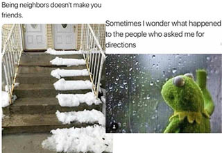 a stairway half cleaned off by a neighbor, kermit the frog staring sadly out a window