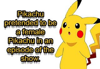The new Pokémon game, Let's go Pikachu/Eevee came out recently and we wanted to share some lesser known Pikachu facts to celebrate.