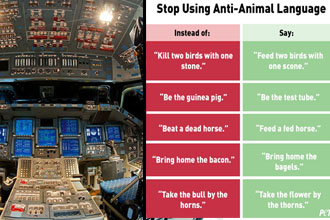 The cockpit of a spaceship and PETA's weird anti-animal campaign.