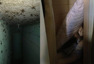 Halls and halls filled with nope. These scary finds will give you the heeby-jeebies, make you check under your bed, and have you wondering what it is that lurks in your basement.