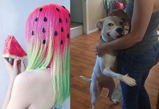 A lady who's hair looks like a watermelon, a dog hugging a lady and looking sly