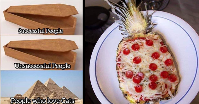 A meme about cat people and A pineapple pizza.