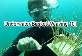 Man in SCUBA gear doing underwater basket weaving.