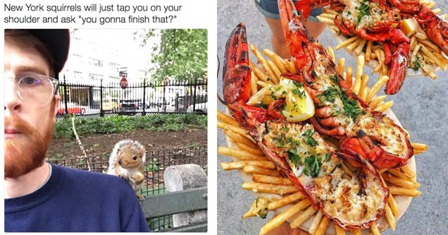 a man looking at the camera with a squirrel behind him and a massive stuffed lobster