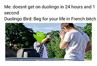 "<a href=""https://knowyourmeme.com/memes/evil-duolingo-owl"" target=new>Evil Duolingo Owl</a> memes are a series of parodies using the mascot for language learning app <a href=""https://www.duolingo.com/"" target=new>Duolingo</a>. In these memes, Duo, the Duolingo owl, is a dangerous teacher, who threatens users when they do not use the application. <br> <br> <a href=""https://www.ebaumsworld.com/articles/the-evil-duolingo-owl-is-coming-to-kill-you/85926379/"" target=new>Learn more about this meme</a>."