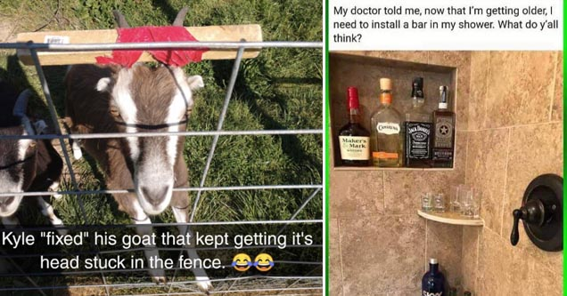 a goat at a fence and a bar in a shower