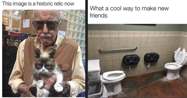 random meme - meme of stan lee holding grumpy cat and two toilets facing one another