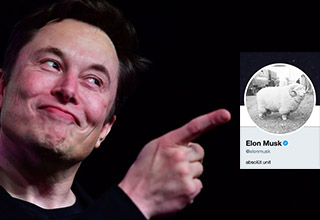 "Today, <a href=""https://twitter.com/elonmusk"" target=""_blank"">Elon Musk</a> hired the <a href=""https://twitter.com/AdamKoszary"" target=""_blank"">'absolute unit' sheep meme creator</a> to be <a href=""https://twitter.com/Tesla"" targer=""_blank"">Tesla's social media manager</a>. He has shown a previous love for absolute units after changing his Twitter profile picture to be the absolute unit sheep back in April and has also tweeted out his own absolute unit tweets.  <br><br> According to <a href=""https://knowyourmeme.com/memes/absolute-unit"" target=""_blank"">Know Your Meme</a>, ""Absolute Unit refers to jokes made on Twitter in which people caption images of large objects or people with a variation on the phrase, ""In awe at the size of this lad. Absolute unit."" <br> <br> Check out these <a href=https://www.ebaumsworld.com/pictures/22-dogs-that-forgot-theyre-not-puppies-anymore/85805833/"" target=""_blank"">doggos that are absolute units</a> <br>  And <a href=""https://cheezburger.com/6484741/17-extra-thicc-animals-reppin-the-worlds-absolute-units"" target=_blank"">these animals reppin' the world's absolute units</a>"