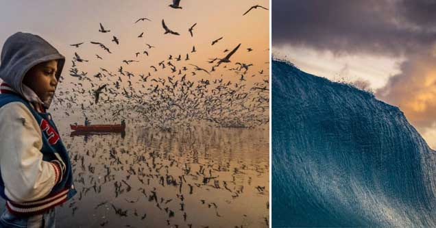 a kid with birds flying around him and a massive wave