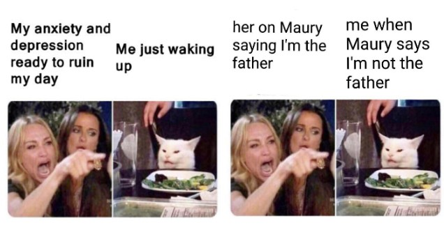 woman yelling at cat memes - my depression and anxiety and her on Maury.