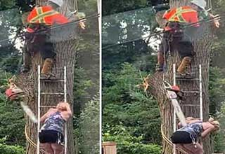 Cutting a Tree With a Chainsaw Goes Very Wrong! - Wtf Video