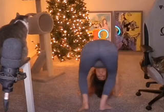Popular Twitch streamer, Alinity, attempts to do a hand stand on stream.